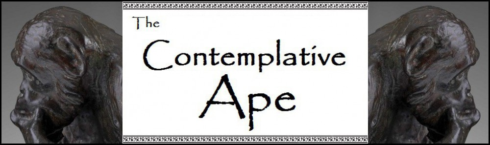 thecontemplativeape