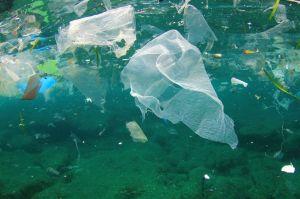 ocean-plastic-garbage-patch.jpg.653x0_q80_crop-smart