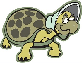 tortoise-clipart-old-turtle-800833-5384845