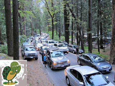 Yosemite-Traffic